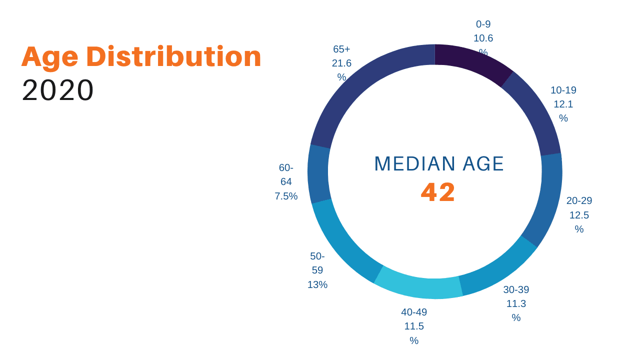Age Distribution Pie Chart
